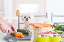 All Natural Dog Food – A Better Choice of Food